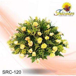 SRC-120